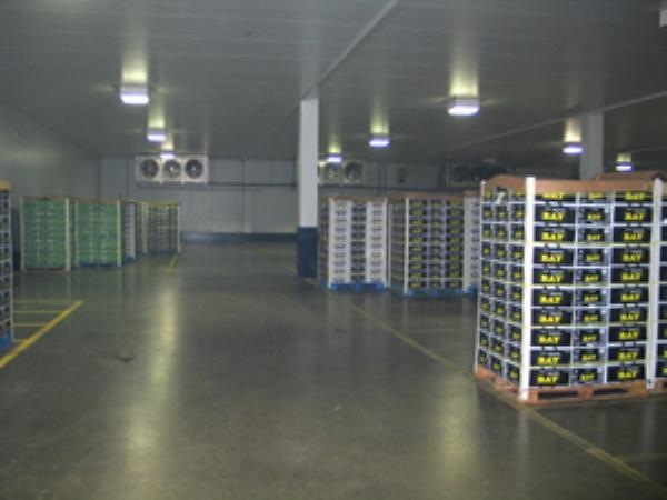 בניית חדרי קירור לחקלאות
